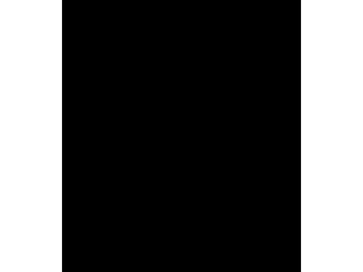 Hopesparks Logo